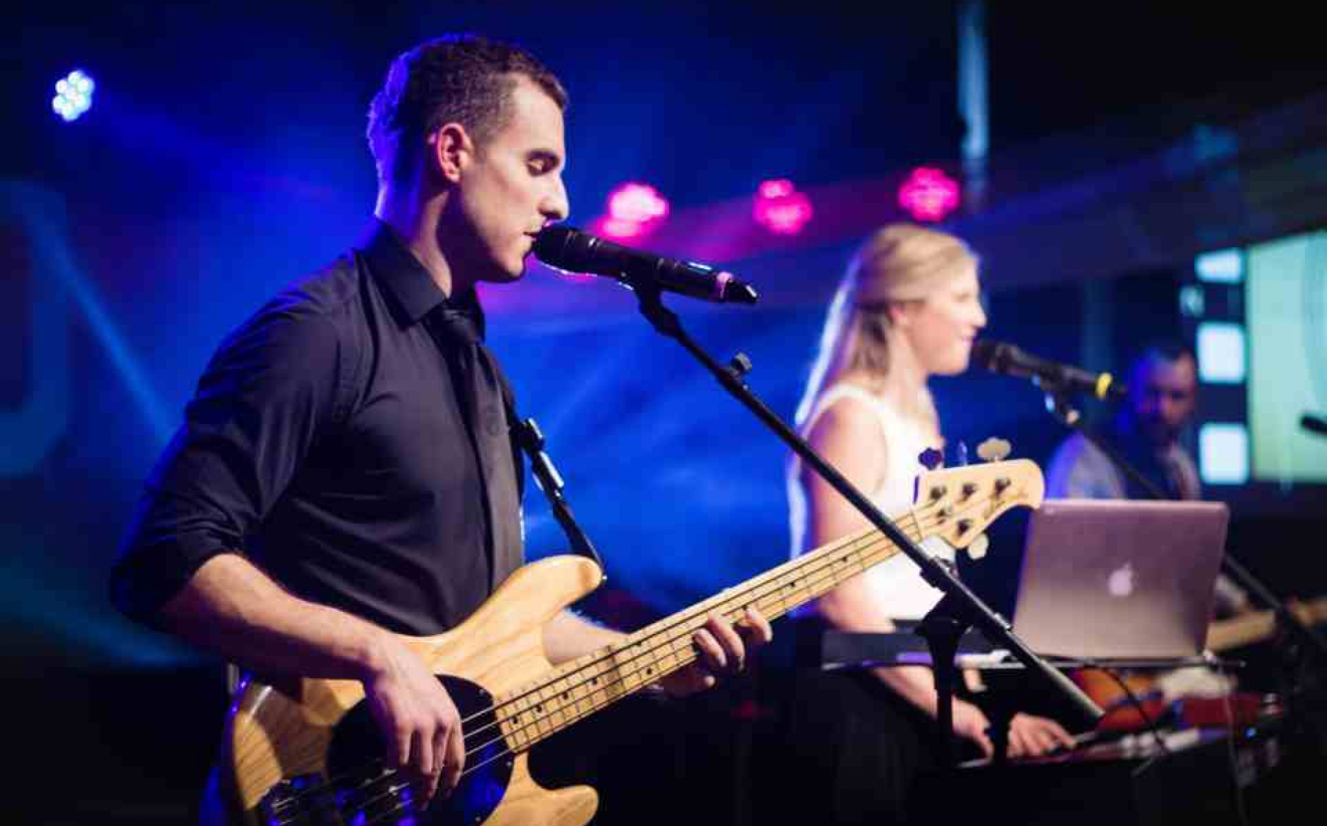Wellington Bands for Hire   Cover Bands   Weddings   Events - The Dreamboats
